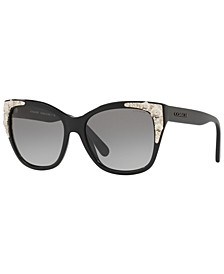 Sunglasses, HC8244 56 L1043