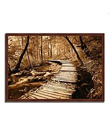 "Creekside Walk II Framed Photograph Print, 38"" x 26"""