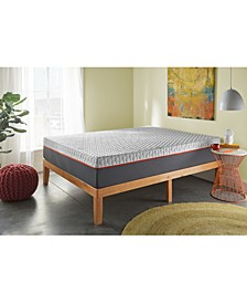 "Early Bird 8"" Memory Foam Plush Mattress- California King"