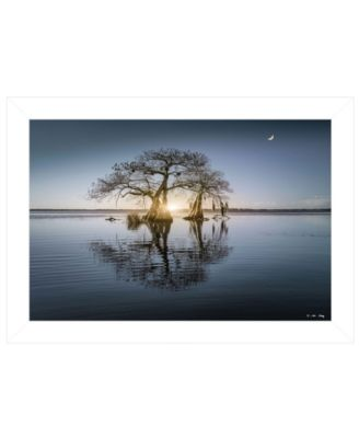 """Tree Reflections by Moises Levy, Ready to hang Framed Print, White Frame, 21"""" x 15"""""""