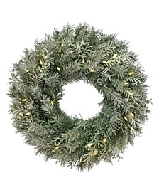 """24"""" Snowy Stonington Fir Wreath with Battery Operated LED Lights"""