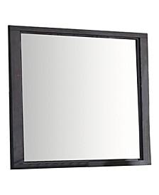 Liatris Mirror