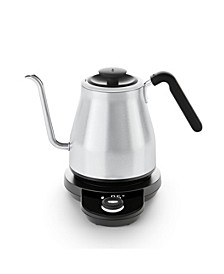 Adjustable Temperature Gooseneck Tea Kettle