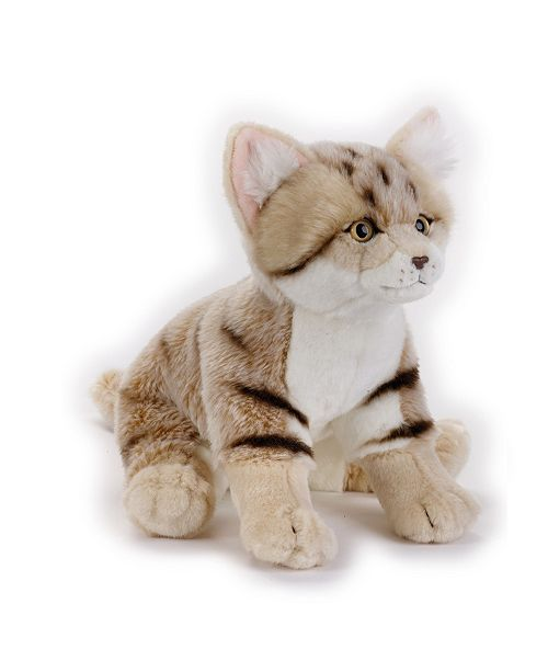 Venturelli Angelo S.N.C. Lelly - National Geographic Sand Cat, Sitting