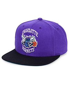 Charlotte Hornets 2 Tone Classic Snapback Cap