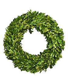 "14"" D Preserved Boxwood Wreath"