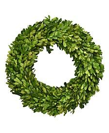 "14"" D Preserved Boxwood Wreath"
