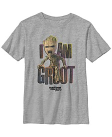 Marvel Big Boys Guardians Vol.2 I Am Groot Cute Angry Short Sleeve T-Shirt
