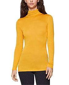 Semi-Sheer Turtleneck Sweater
