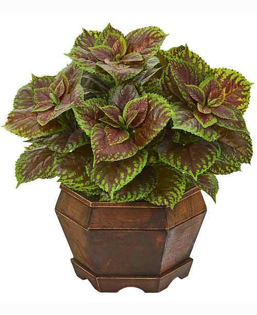 Nearly Natural 17in. Coleus Artificial Plant in Decorative Planter Real Touch