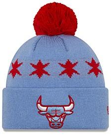 Chicago Bulls City Series Knit Hat