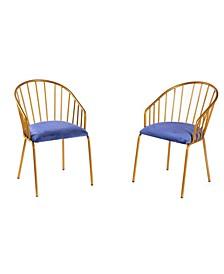 Silk Velvet Modern Gold-Tone Metal Chair, Set of 2