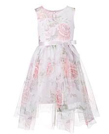 Little Girls Printed Mesh Dress