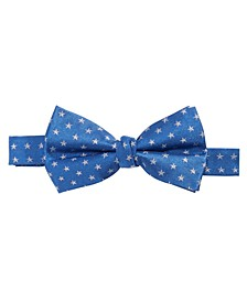 Big Boys Pre-Tied Mini-Stars Silk Bow Tie