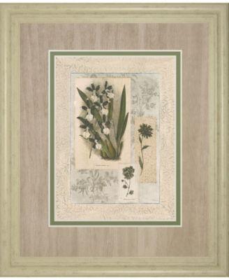 Histoire Du Orchid VI by Carney Framed Print Wall Art, 34