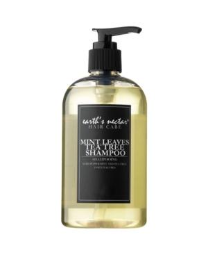 Mint Leaves Shampoo