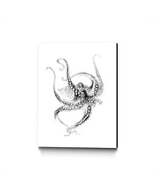 """Alexis Marcou Octopus Museum Mounted Canvas 33"""" x 44"""""""