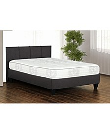 "Primo Adley 10"" Cushion Firm Mattress -Twin"