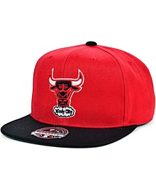 Chicago Bulls Wool 2 Tone Fitted Cap
