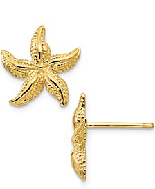 Starfish Stud Earrings in 14k Yellow Gold