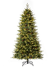 Pre-Lit Green Fir Artificial Christmas Tree with 500 LED Lights, Multi-Color, Remote Controller