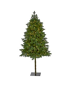 Swiss Alpine Artificial Christmas Tree with 250 Clear LED Lights and 450 Bendable Branches