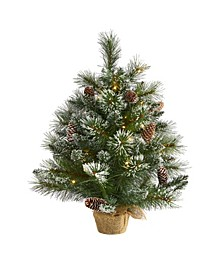 Frosted Pine Artificial Christmas Tree with 35 Clear LED Lights, Pinecones and Burlap Base