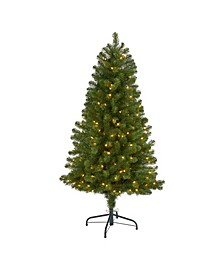 Virginia Fir Artificial Christmas Tree with 200 Clear Lights and 379 Bendable Branches