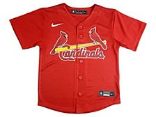 Nike St. Louis Cardinals Kids Official Blank Jersey