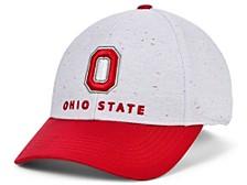 Men's Ohio State Buckeyes Wind Flex Cap
