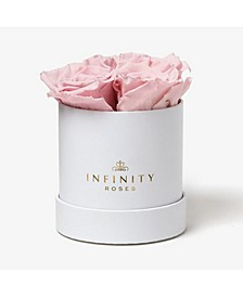 Round Box of 4 Pink Real Roses Preserved To Last Over A Year