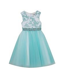 Little Girls Embroidered Mesh Dress