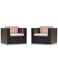 Aldin Club Chair Set, Quick Ship