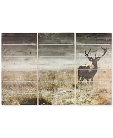 Graham & Brown Highland Stag Print Set on Wood , Set of 3