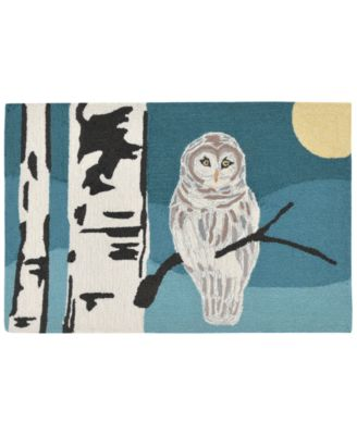 Liora Manne Front Porch Indoor/Outdoor Snowy Owl Night 2' x 3' Area Rug