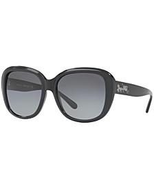 Polarized Sunglasses , HC8207