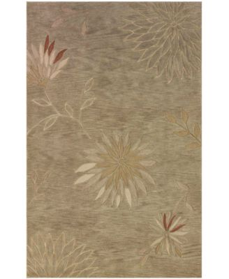 "Area Rug, Studio SD301 Aloe 3' 6"" x 5' 6"""