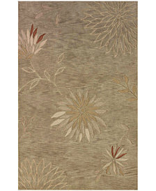 "Dalyn Area Rug, Studio SD301 Aloe 3' 6"" x 5' 6"""