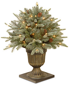 "National Tree Company 24"" Feel-Real® Frosted Arctic Spruce Porch Bush With Pine Cones & 50 Clear Lights"