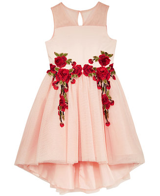 Nanette Lepore Rose Appliqu 233 Party Dress Big Girls 7 16