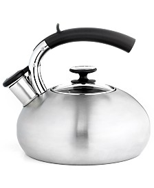 Prodigy Stainless Steel 2 Qt. Tea Kettle