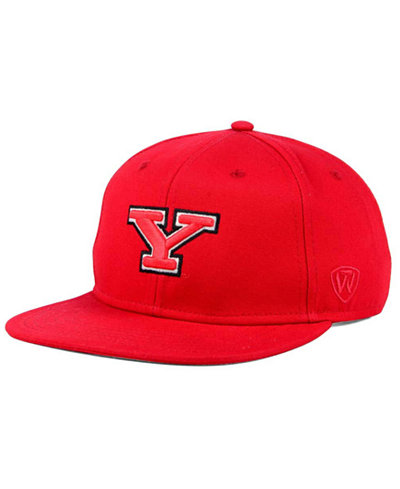 Top of the World Youngstown State Penguins League Snapback Cap