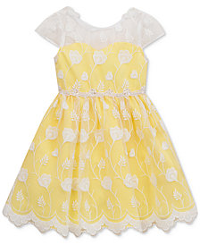 Rare Editions Embroidered Overlay Dress, Baby Girls