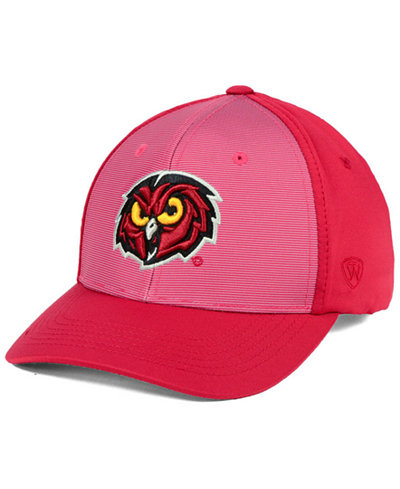 Top of the World Temple Owls Mist Cap