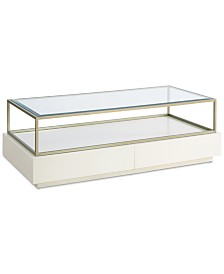 Delano Glass Top 2-Drawer Rectangular Coffee Table