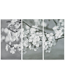 Madison Park Branches in Bloom 3-Pc. Gel-Coated Print Set