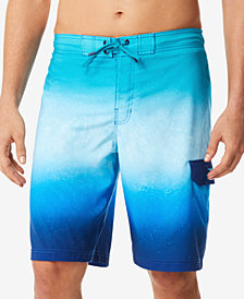 Speedo Men's Spray Blend Ombré E-Board 9'' Swim Trunks