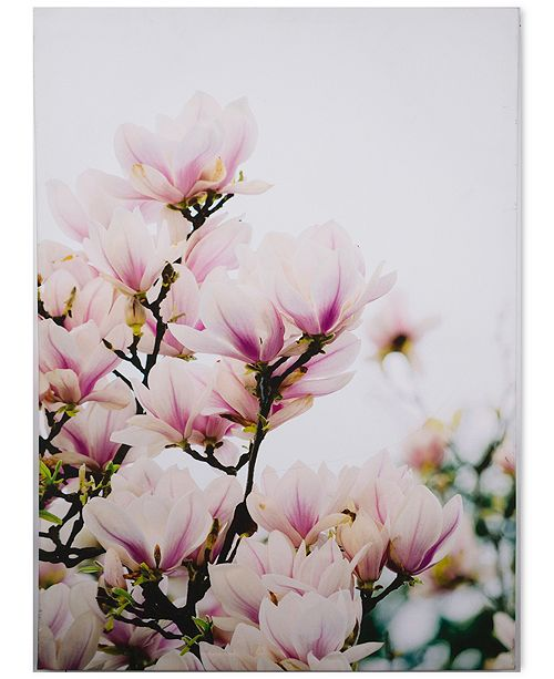 Graham & Brown Magnolia Blossoms Canvas Print