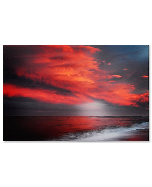 """Trademark Global Philippe Sainte-Laudy 'The Great Gig in the Sky' 30"""" x 47"""" Canvas Wall Art"""