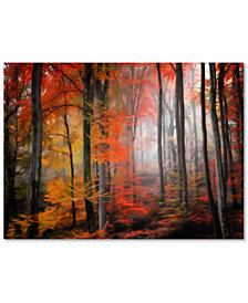 """Philippe Sainte-Laudy 'Wildly Red' 22"""" x 32"""" Canvas Wall Art"""